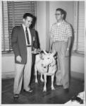 """Al Weiss, Albert """"Tito"""" Krohn, and goat"""