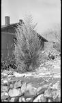 El Paso, Texas, House, Snow