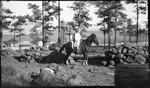 Madera, Chihuahua, Horse,Fitzgerald children
