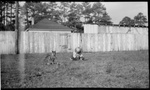 Madera, Chihuahua, Fitzgerald children