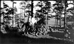 Madera, Chihuahua, Fitzgerald family, Horse