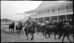 Madera, Chihuahua, Revolution, Horses