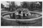 El Paso, Texas. Alligator Pool.