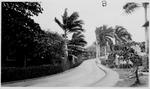 Corozal, Panama. Road.