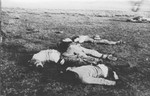 Battlefield tragedy, Perdenales, Chihuahua