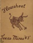 Flowsheet Texas Mines